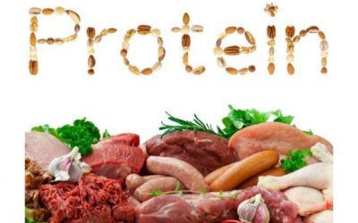 PROTEIN – How much do I really need?